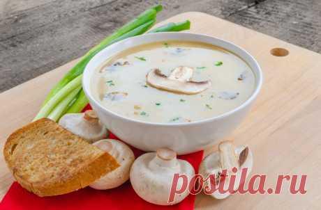 6 best original mushroom soups