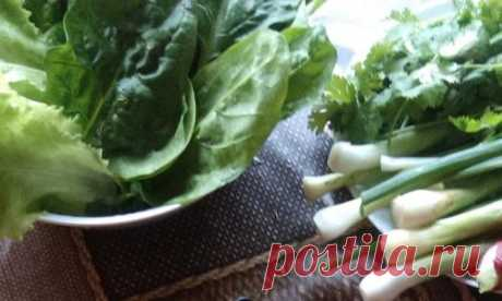 Recipe of salad from green onions)