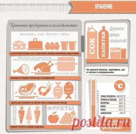 Хранение продуктов питания в холодильнике: температура, высота, особенности. И пусть все продукты будут свежими и вкусными.