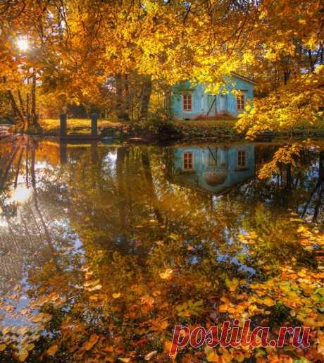 Осень в Царском Селе, Санкт-Петрбург. Автор фото — Эдуард Гордеев: