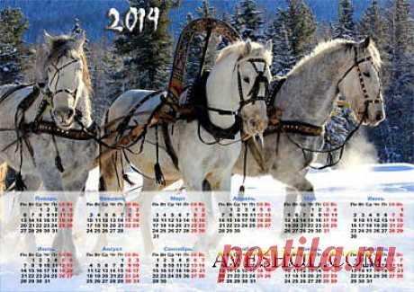 Календарь 2014 - Три лошади в упряжке » ШКОЛА ПЛЮС
