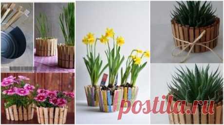 Используем деревянные прищепки для красивого декора комнат | Блоги о даче и огороде, рецептах, красоте и правильном питании, рыбалке, ремонте и интерьере