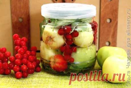 👌 Моченые яблоки с калиной, рецепты с фото Моченые яблоки — полезное и вкусное кушанье. Есть много рецептов по приготовлению моченых яблок. Сегодня я расскажу один из них, когда яблоки вымачиваются вместе с ягодами калины....