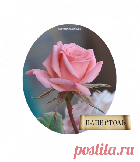 """Папертоль """"Роза Мини"""" — Купить в Днепре (Днепропетровске) на Bigl.ua (265569622)"""