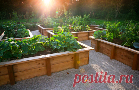 The correct sides for beds will protect from weeds, will protect a design from rains and will reduce weeding time. Their construction requires only a little time and imaginations! We share practical and beautiful ideas: