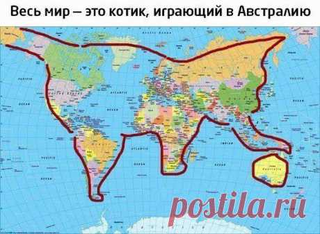 Весь мир - это котик играющий в Австралию)