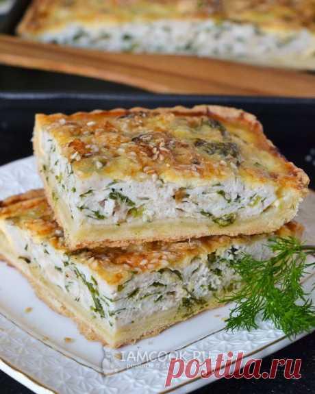 Открытый пирог с курицей и сыром — рецепт с фото пошагово