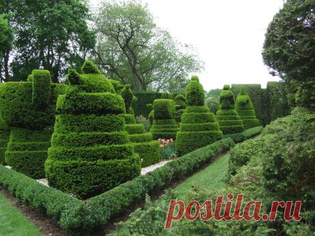 Топиарный сад Харви Ладью / Ladew Topiary Gardens / США.