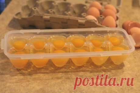 Dicas para o dia a dia - Ovos congelados