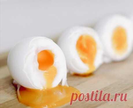 Диета «Три яйца». До минус 25 кг. Сытная и проста | ЗОЖ | Яндекс Дзен