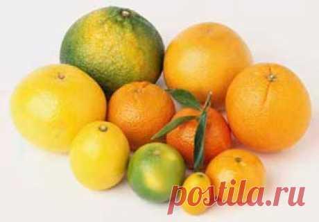 Цитрусовые плоды   Рецепты как похудеть