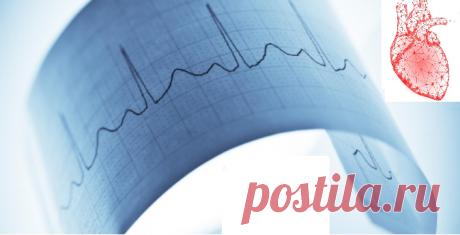13 тестов сердца, которые может назначить кардиолог, и что они означают | Медицина и флебология | Яндекс Дзен