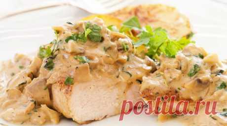 Курица в сырном соусе: рецепт питательного и полезного блюда