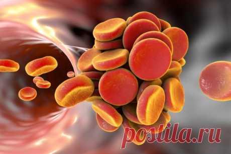 Назван простой способ снизить плохой холестерин без лекарств Существует простой способ снизить уровень холестерина в организме, не прибегая к медикаментам, а лишь внеся некоторые изменения в рацион питания.