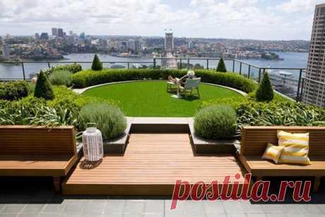Сад на крыше одного из небоскребов в Сиднее / Основы бизнеса