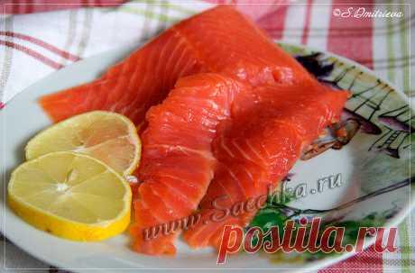 Нежный посол красной рыбы - рецепт с фото, как засолить рыбу