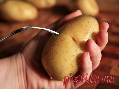 В офисе показала коллегам «трюк»: отварила картофель без воды и за 4 минуты. Ароматная картошка без соли в рецепте | О вкусах и цветах | Яндекс Дзен