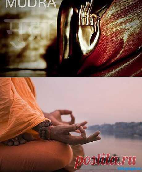 Мудры на все случаи жизни | Cуть йоги
