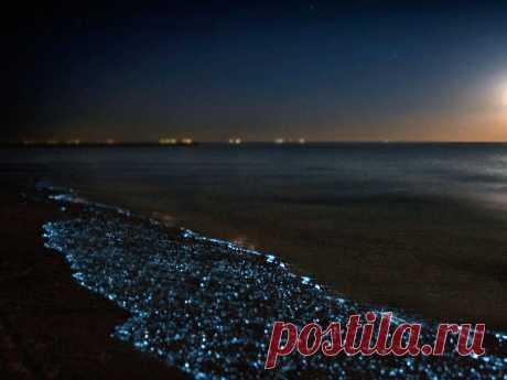 Отдых в Голубицкой. Море и золотой песок | Анапа | Яндекс Дзен