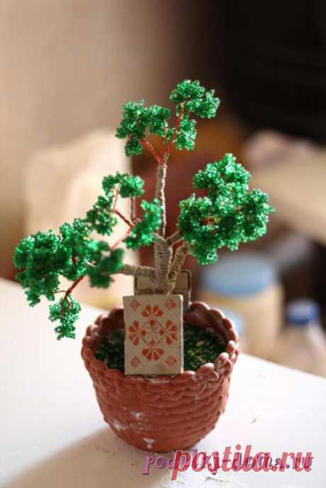 Дерево бонсай из бисера - мастер-класс