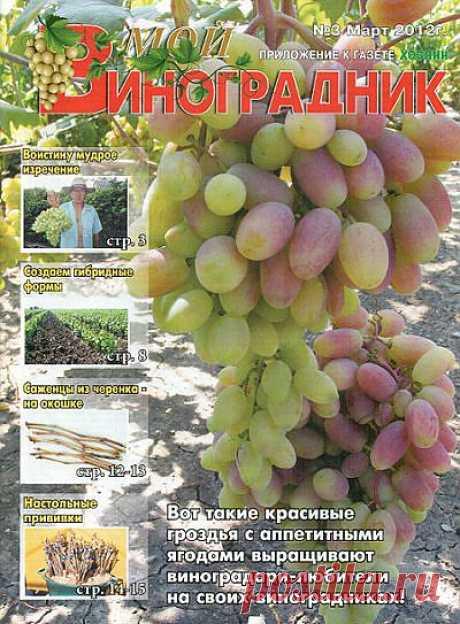 """МОЙ Виноградник, приложение к газете """"ХОЗЯИН""""."""