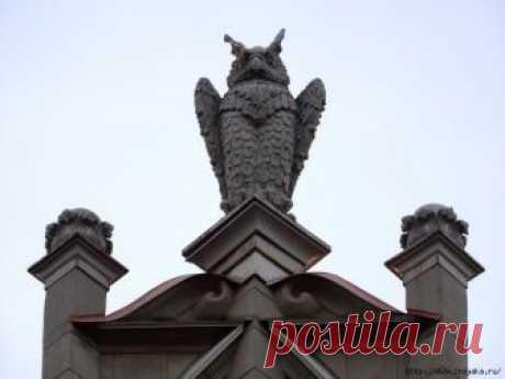 Потрясающие совы в архитектуре Санкт-Петербурга!