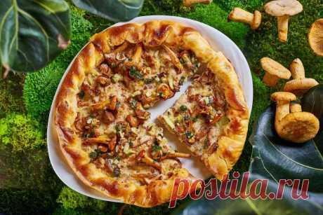 Пирог с грибами: рецепты на любой вкус