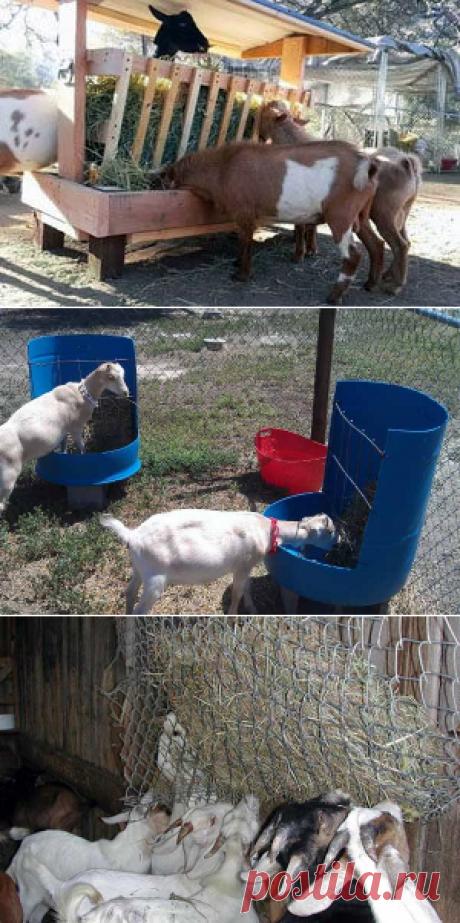 Кормушка для козы своими руками – фото, чертежи и размеры