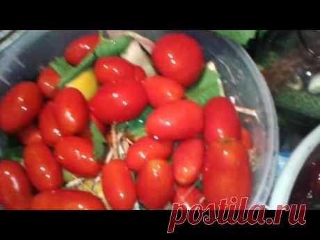 Солим помидоры  с горчицей.
