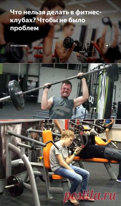Что нельзя делать в фитнес-клубах? Чтобы не было проблем | fitnechannel | Яндекс Дзен