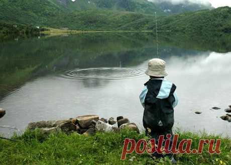 """Увлекательная ловля весенней уклейки на """"бомбарду""""   Рыбалка для людей   Яндекс Дзен"""
