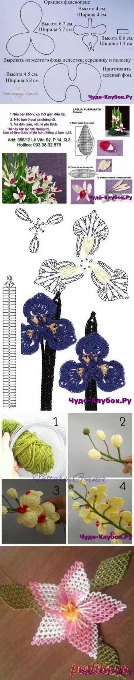 Вязаные орхидеи, схемы и описания + Видео |сайт ЧУДО-клубок