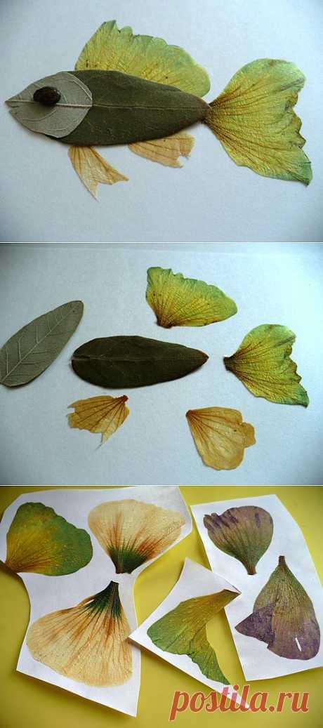 (+1) - Сделать с детьми работу из сухих растений | Очумелые ручки
