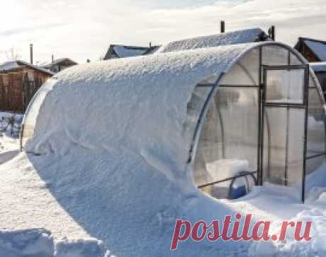 How to make the greenhouse ready for the winter: useful tips to summer residents