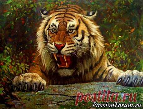 Тигр - символ величия и мощи - запись пользователя Елена в сообществе Картинки для творчества в категории Животные и птицы
