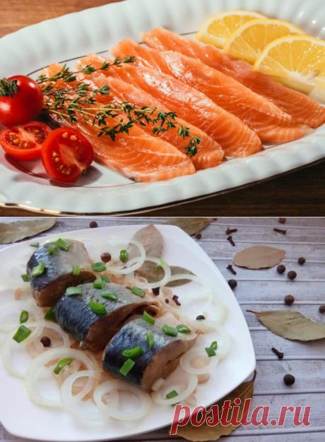 Как засолить рыбу: 11 способов идеальной закуски