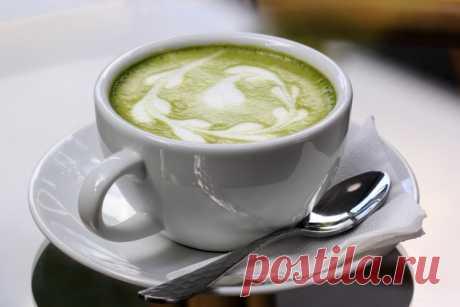 Стакан классического зеленого чая с молоком позволит вам сбросить вес, вот несколько советов - Полезные советы красоты