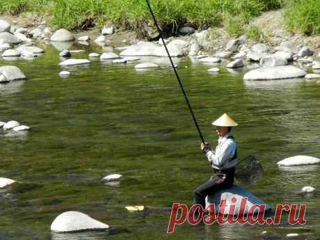 Круче, чем обычный поплавок! Снасть «херабуна» - просто о сложном | Рыбалка для людей | Яндекс Дзен