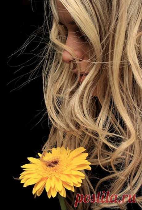 Как правильно ухаживать за волосами. Советы и рецепты » Счастье Здоровья Как правильно ухаживать за волосами. Красивые волосы - это забота и уход. Советы и рецепты для сохранения волос здоровыми и привлекательными