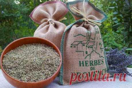 Прованские травы: состав, пропорции, куда добавлять приправу, рецепт приготовления своими руками, применение смеси французских трав, чем заменить