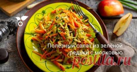 Полезный салат из зелёной редьки с морковью Салат из зелёной редьки с морковью — рецепт для постного вегетарианского и диетического меню. Польза редьки огромна, к тому же овощ этот бюджетный. Зелёная редька или «маргеланская» обладает более мягким вкусом и не таким ядрёным запахом, как чёрная.