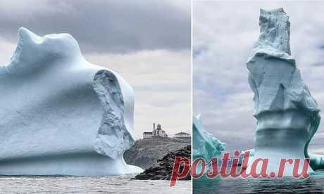 Как выглядит шествие айсбергов по Лабрадорскому морю