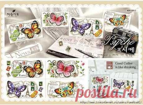 Коллекция бабочек..