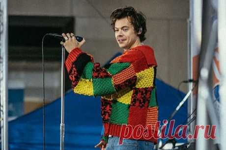 The V&A museum has procured the Harry Styles cardigan that started a TikTok furore – Dailylites