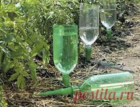 Пластиковая бутылка – незаменимая многофункциональная помощница на даче...