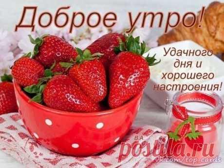 Утро должно быть приятным, Как радуга — светлым, и ярким, И обязательно добрым, Волшебным и легким, огромным! Таким необъятным, как небо, И вкусным, как корочка хлеба. И сладким, как мед и печенье, Ведь утро — рассвета рождение! Пусть утро у всех будет добрым, Приятным и ярким, огромным... И обязательно мирным! С любовью, добром, позитивом. #музыка