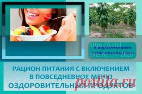 Санкт-Петербург, доставка продукции - Полезные рецепты
