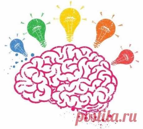 ¡El cerebro no se va a la pensión por la edad!
