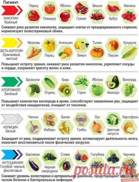 О пользе продуктов емко и красочно