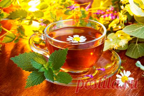 23 añadiduras útiles al té, que es fácil criar más \u000a\u000aTodos nosotros tomamos el té, pero no siempre lo hacemos con la utilidad para la salud. Para que el té ayude nuestro organismo, los es necesario un poco amenizar. 23 añadiduras siguientes al té son criadas fácilmente en …